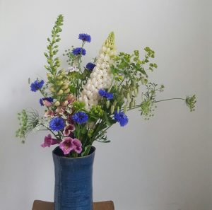 Lupin large bunch